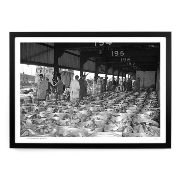 Fish Dock Landings 1964