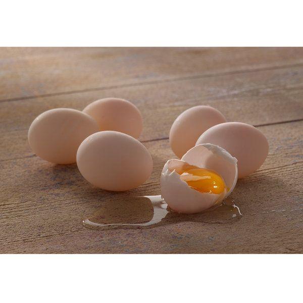 Eggs Photographic Print (FO_Eggs_019)