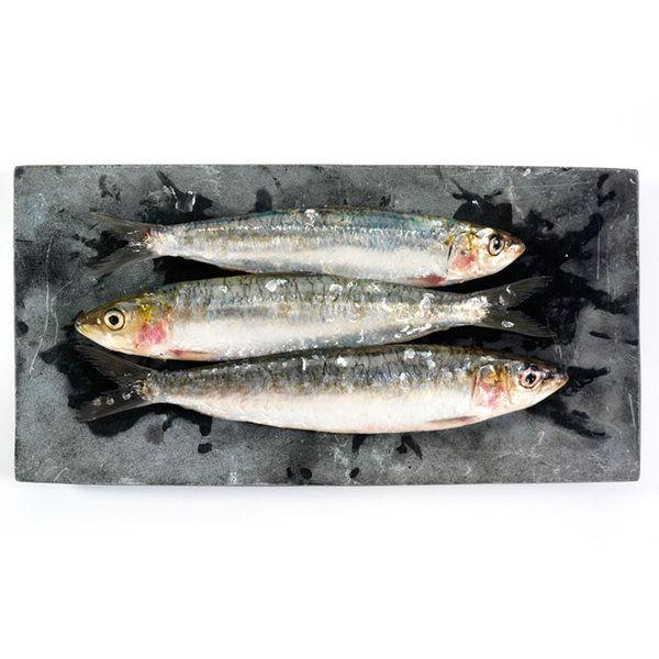 Fish Photographic Print (FO_Fish_004)
