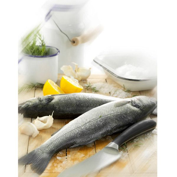 Fish Photographic Print (FO_Fish_005)