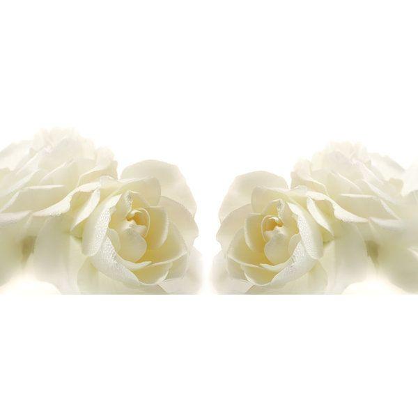 Roses Photographic Print (F_rose_011)