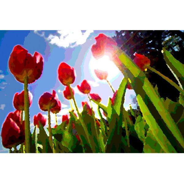 Tulips Photographic Print (F_tulip_005)