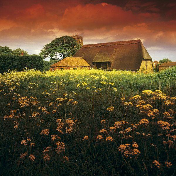 Landscape Photographic Print (LA_Field_021)