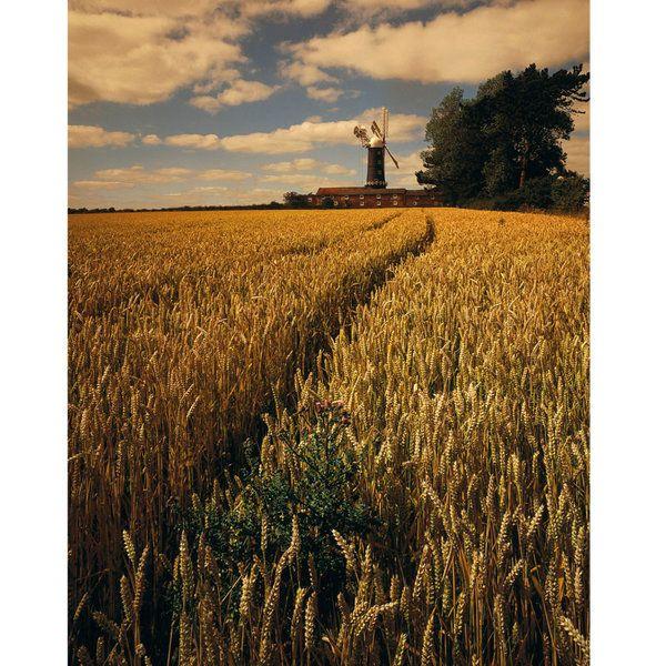 Landscape Photographic Print (LA_Skidby_006)