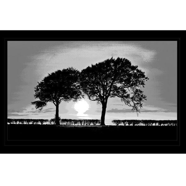 Landscape Photographic Print (LA_Trees_001)