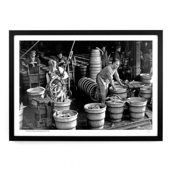 A217 Fish Landing St Andrew's Dock 1959