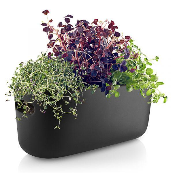 Eva Solo Self-Watering Herb Organiser Black